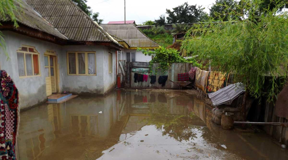 inundatie-tiganie