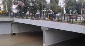 pescari-de-Cuiejdi