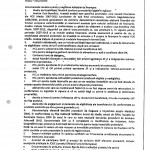 document-apa-4