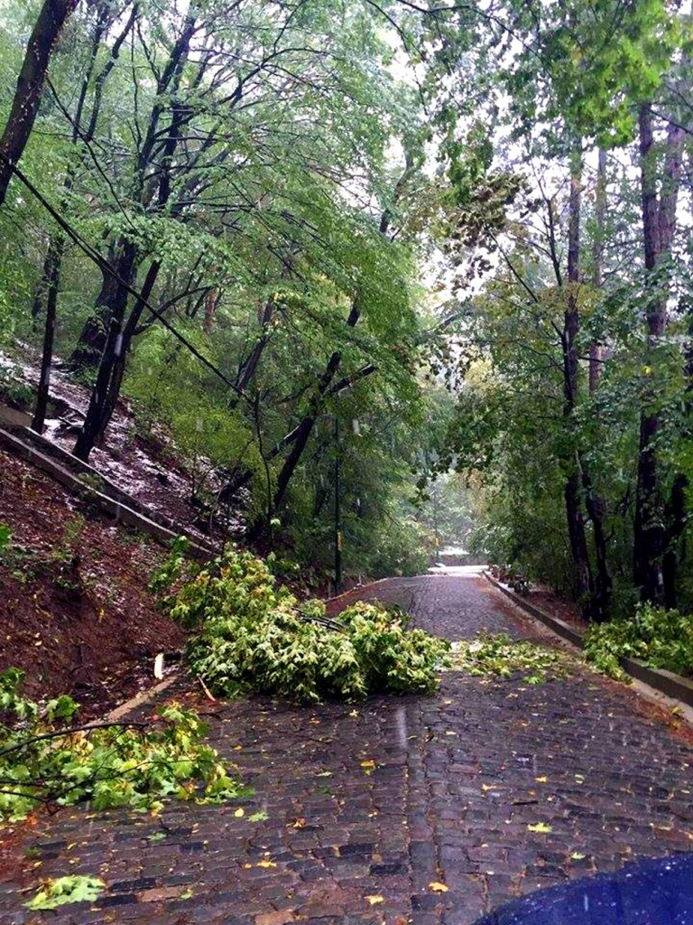 alunecati-teren-cozla Piatra Neamt (1)