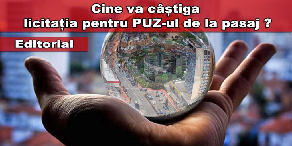 licitatie-PUZ