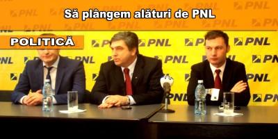 pnl-neamt