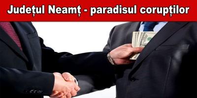 paradis-corupti