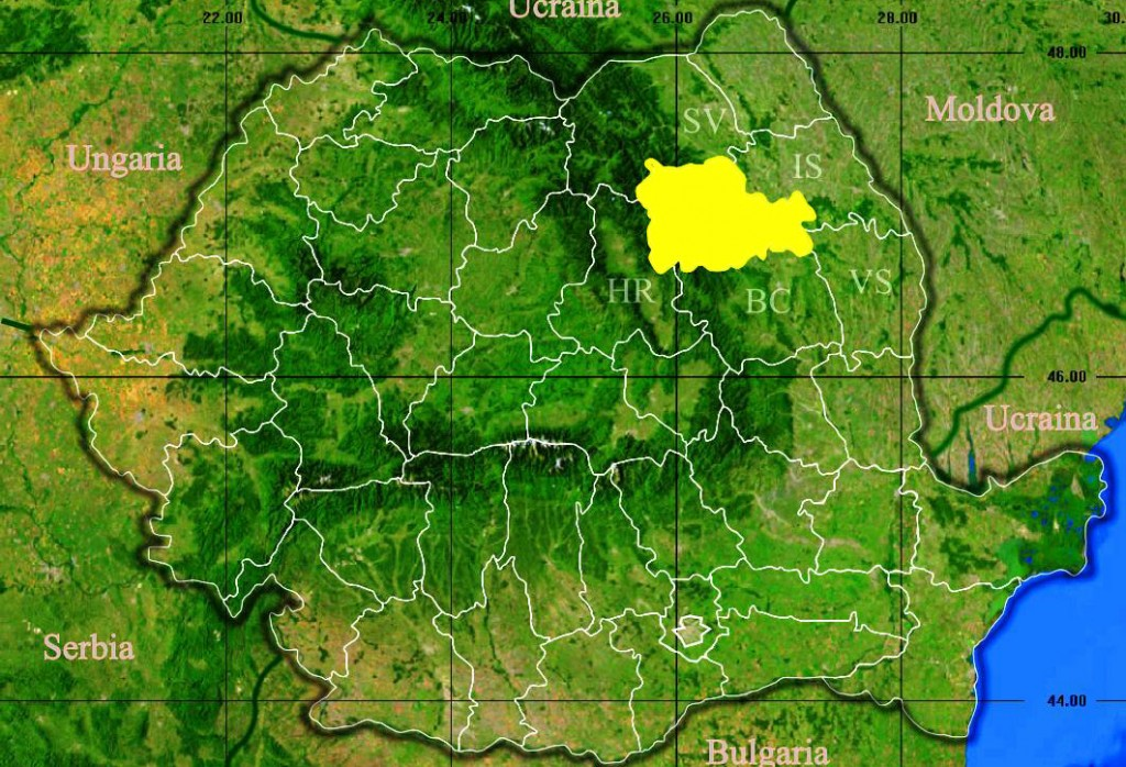 Judetul_Neamt_3D_map