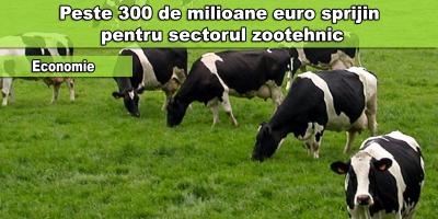sprijin pentru sectorul zootehnic