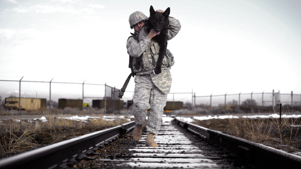 Staff Sgt. Erick Martinez, a military dog handler at Hill Air Force Base, Utah, uses an over-the-shoulder carry with Argo II on March 4, 2011. This exercise helped build trust, loyalty and teamwork between Martinez and Argo II, who have worked together for only two months. (U.S. Air Force photo/Airman 1st Class Allen Stokes)