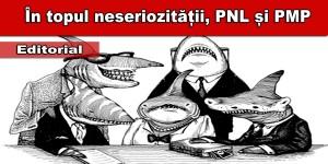 pnl-si-pmp