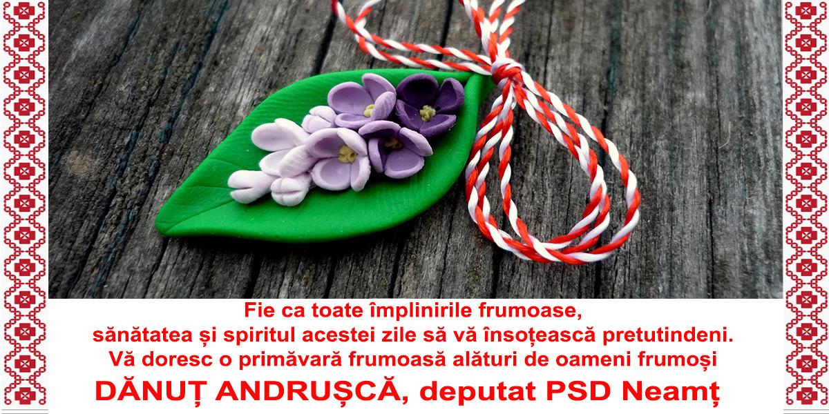 andrusca-1-martie
