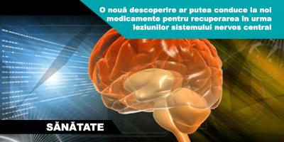 leziuni-creir